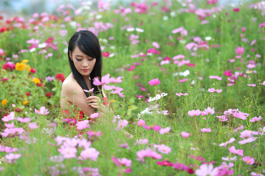 花丛中的美女 都市伊人