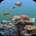 3D海底世界动态壁纸 個人化 App Store-愛順發玩APP