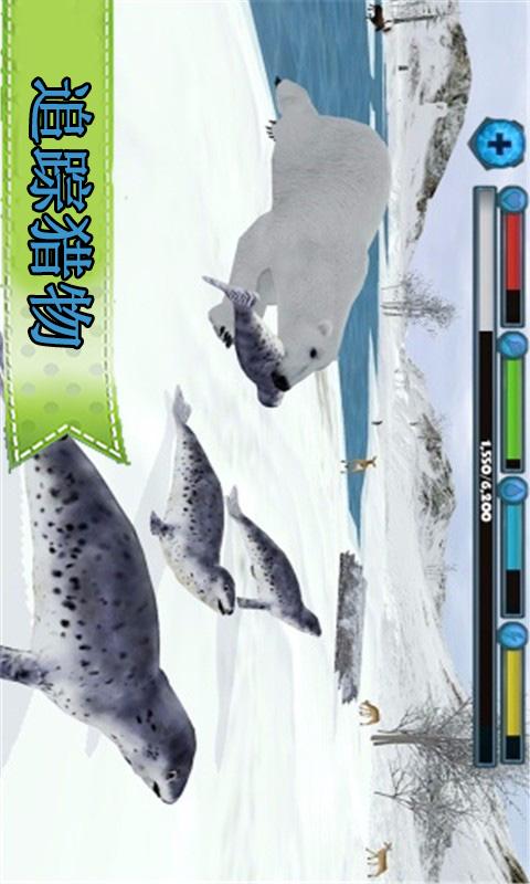 动物北极熊模拟-应用截图