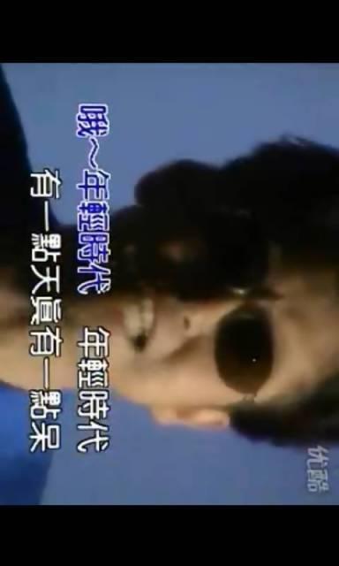 最另类歌手郑智化